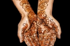 Henna1-300x300